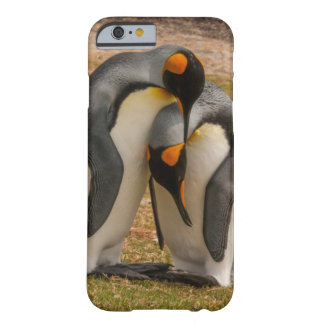 King penguins caressing, Falkland Barely There iPhone 6 Case