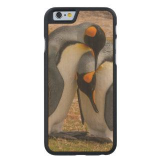King penguins caressing, Falkland Carved Maple iPhone 6 Case