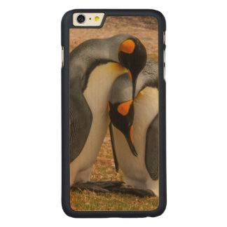 King penguins caressing, Falkland Carved Maple iPhone 6 Plus Case