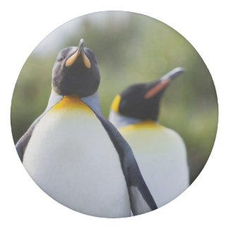 King penguins eraser