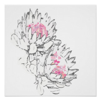King Protea digital grey and Pink Poster