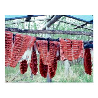 King Salmon Drying on Racks Postcard