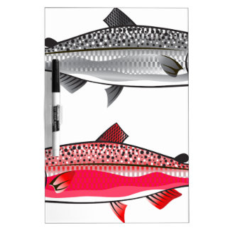 King Salmon. Silver and Spawning. Dry Erase Whiteboard