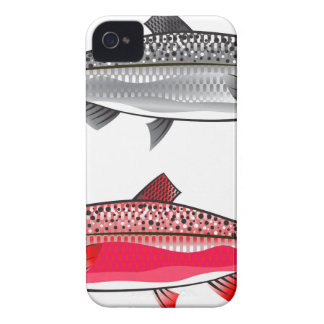 King Salmon. Silver and Spawning. iPhone 4 Cover