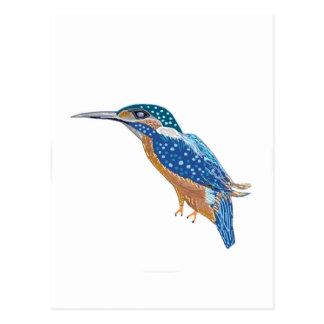 KingFisher Bird Postcard
