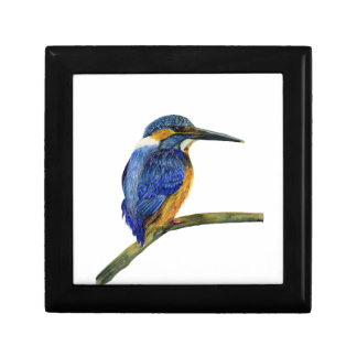 Kingfisher Bird Watercolor Halcyon Bird Gift Box