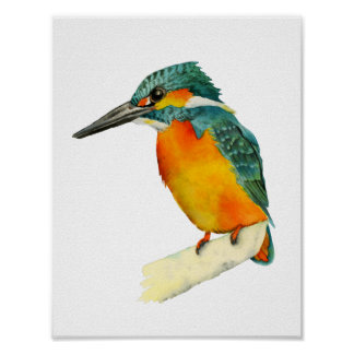 Kingfisher Bird Watercolor Painting Poster