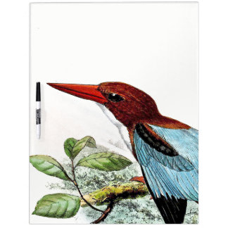 Kingfisher Birds Animals Pond Dry Erase Board