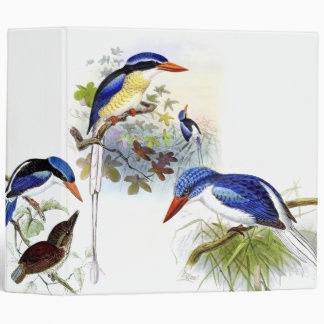 Kingfisher Birds Wildlife Animal Pond Avery Binder