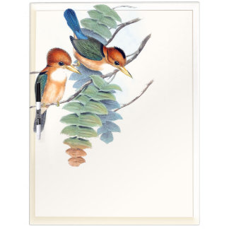 Kingfisher Birds Wildlife Animals Dry Erase Board
