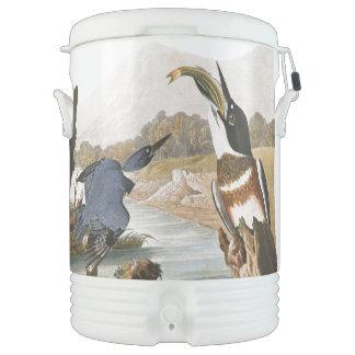 Kingfisher Birds Wildlife Animals Igloo Cooler