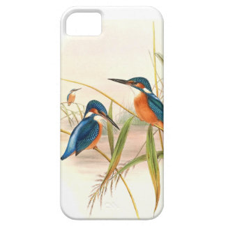Kingfisher Birds Wildlife Animals Pond iPhone 5 Case