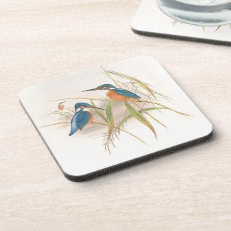 Kingfisher Birds Wildlife Pond Animals Coaster