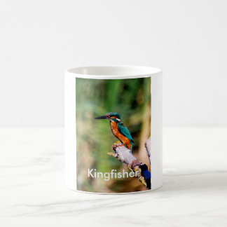Kingfisher Coffee Mug