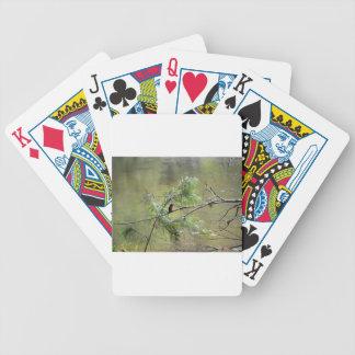 KINGFISHER EUNGELLA NATIONAL PARK AUSTRALIA BICYCLE PLAYING CARDS