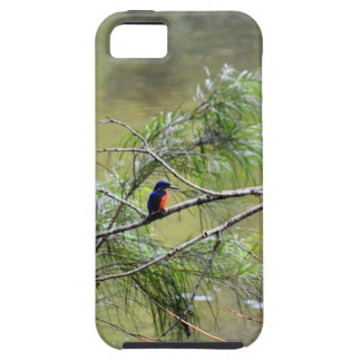 KINGFISHER EUNGELLA NATIONAL PARK AUSTRALIA CASE FOR THE iPhone 5