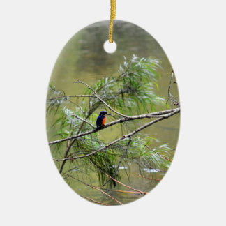 KINGFISHER EUNGELLA NATIONAL PARK AUSTRALIA CERAMIC OVAL ORNAMENT