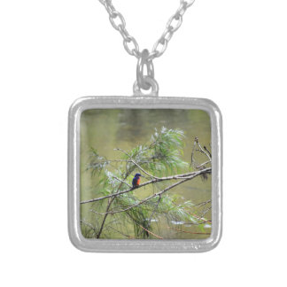 KINGFISHER EUNGELLA NATIONAL PARK AUSTRALIA SILVER PLATED NECKLACE