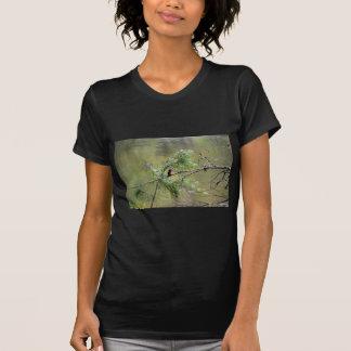 KINGFISHER EUNGELLA NATIONAL PARK AUSTRALIA T-Shirt