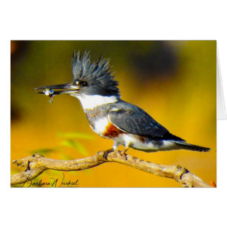 Kingfisher holding a fish card