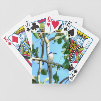 KINGFISHER IN TREE QUEENSLAND AUSTRALIA BICYCLE PLAYING CARDS