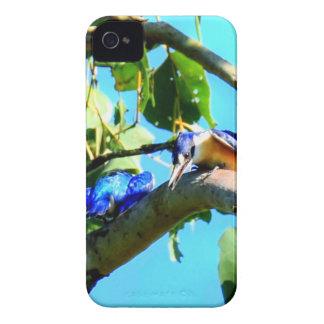 KINGFISHER IN TREE QUEENSLAND AUSTRALIA iPhone 4 CASE