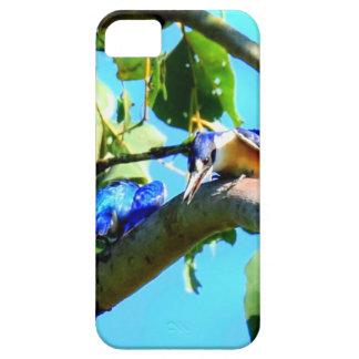 KINGFISHER IN TREE QUEENSLAND AUSTRALIA iPhone 5 CASES