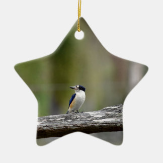 KINGFISHER QUEENSLAND AUSTRALIA CERAMIC ORNAMENT