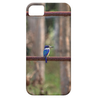 KINGFISHER RURAL QUEENSLAND AUSTRALIA CASE FOR THE iPhone 5