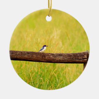 KINGFISHER RURAL QUEENSLAND AUSTRALIA CERAMIC ORNAMENT