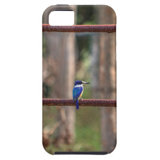 KINGFISHER RURAL QUEENSLAND AUSTRALIA iPhone 5 COVER