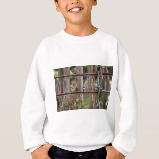 KINGFISHER RURAL QUEENSLAND AUSTRALIA SWEATSHIRT