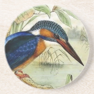 Kingfisher Vintage Bird Illustration Coaster