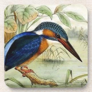 Kingfisher Vintage Bird Illustration Coaster