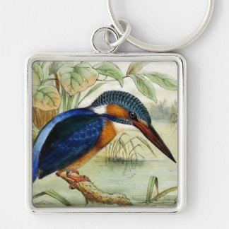 Kingfisher Vintage Bird Illustration Keychain