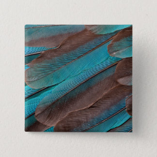 Kingfisher Wing Feathers 2 Inch Square Button