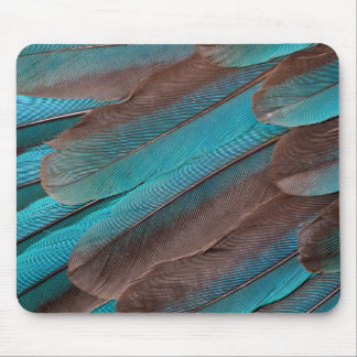 Kingfisher Wing Feathers Mouse Pad