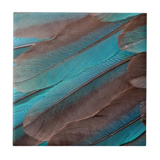 Kingfisher Wing Feathers Tile