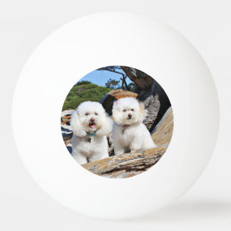 Kirby Shelby - Poodles on Carmel Beach Ping Pong Ball