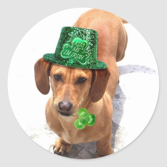 Kiss me I'm Irish Dachshund stickers