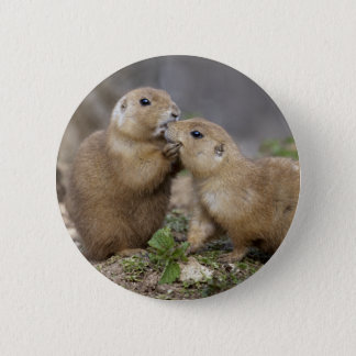 Kiss Me Quick Badge 2 Inch Round Button