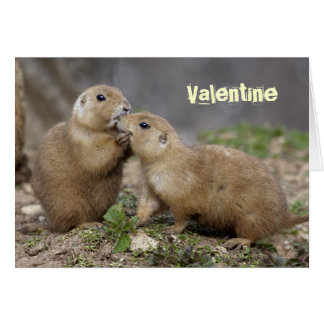 Kiss Me Quick Card - Valentine