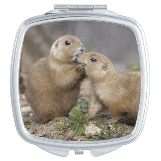 Kiss Me Quick Compact Mirror