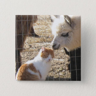 Kisses from June Bug 2 Inch Square Button