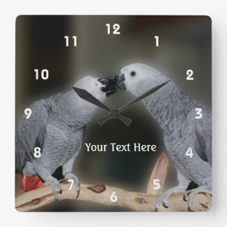 Kissing African Grey Parrots Animal Square Wall Clock