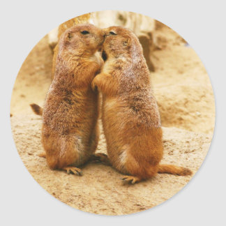 Kissing Black Tailed Prairie Dogs Classic Round Sticker