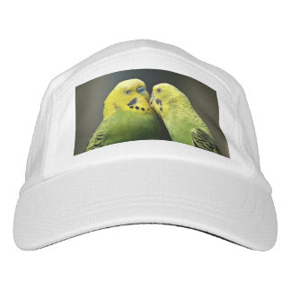 Kissing Budgie Hat