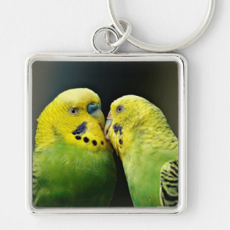 Kissing Budgie Keychain