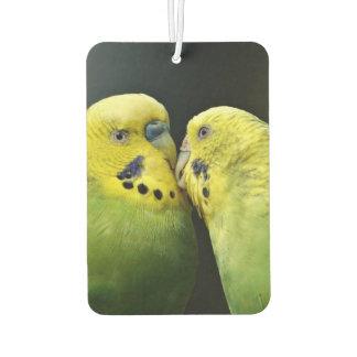 Kissing Budgie Parrot Bird Car Air Freshener