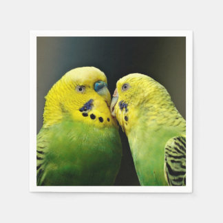 Kissing Budgie Parrot Bird Disposable Napkins